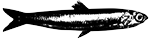 La Pescaderia Studio Logo